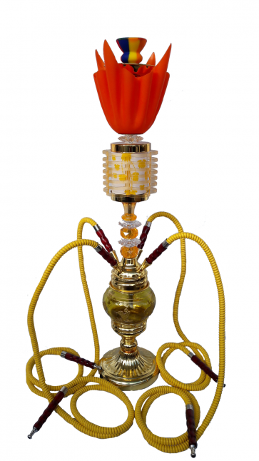 Dragon Gold Hookah Pipe 4 Hoses